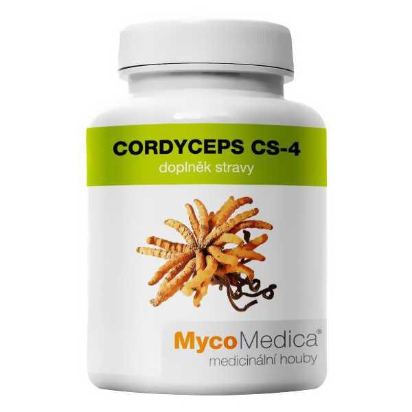 CORDYCEPS CS-4 – Cordyceps sinensis – DONG CHONG XIA CAO – K01