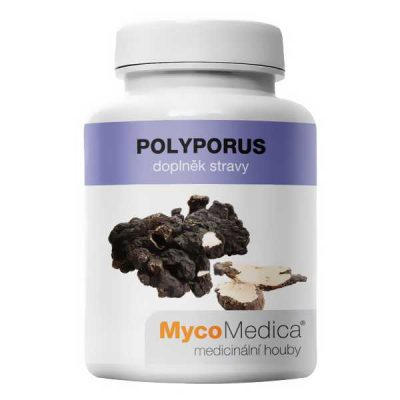 Polyporus, Trúdnik klobúčkatý, zhu ling, odstraňuje opuchy, podporuje močenie,