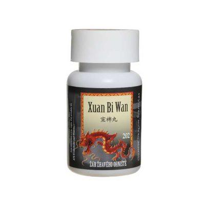 Žiara žeravého ohniska, Xuan Bi Wan