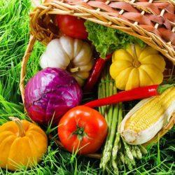 Vitamíny, minerály, antioxidanty