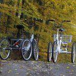 Tricykle